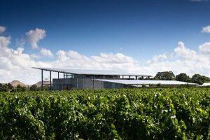 Eichardts-blog-winemaker-dinner-Paritua