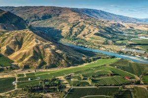 Eichardts-blog-winemaker-dinner-akarua