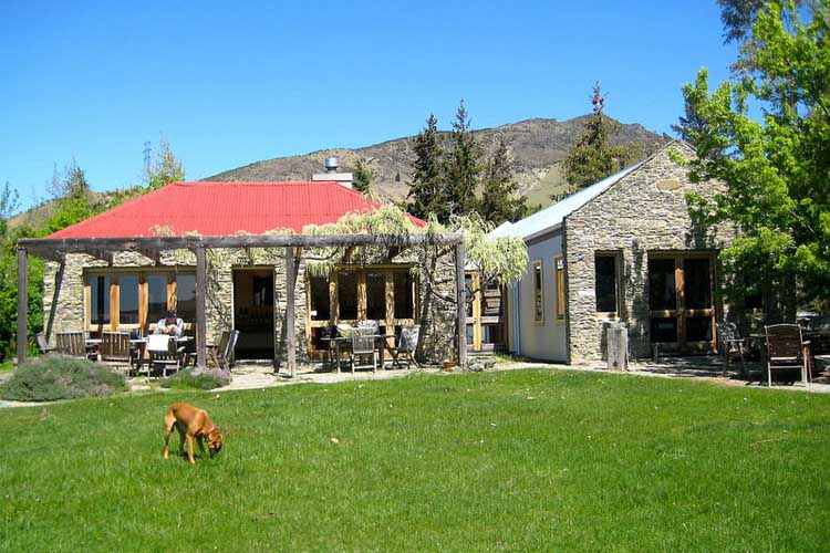 Eichardts-blog-winemaker-dinner-terra-sancta